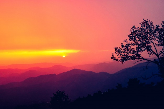 Julaibib, Lelaki yang Dimuliakan Langit