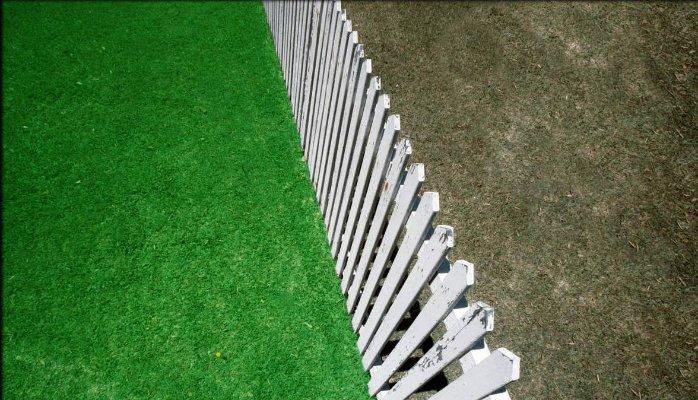 Rumput Tetangga (Tidak) Lebih Hijau