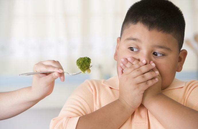 10 Tips Jitu Mengatasi Anak Picky Eater