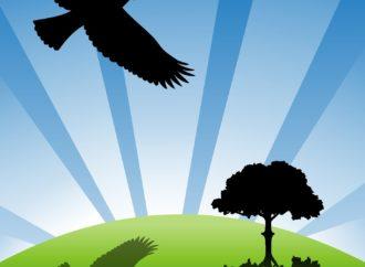 Hari Bumi Sedunia, Mari Ajarkan Anak 4 Hal Ini agar Lebih Mencintai Bumi